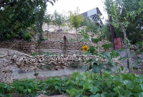 روستای وفس