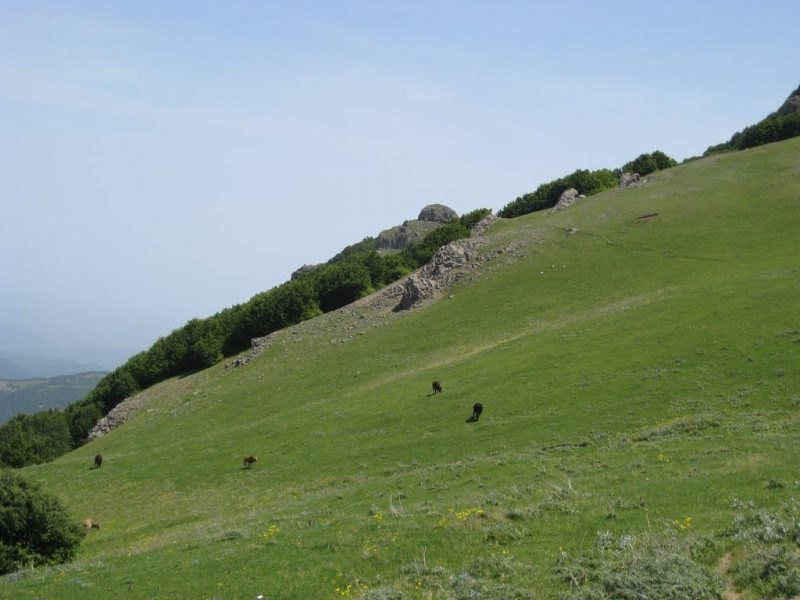 2323 قله اسپیناس
