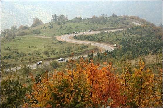 2511 جنگل توسکستان