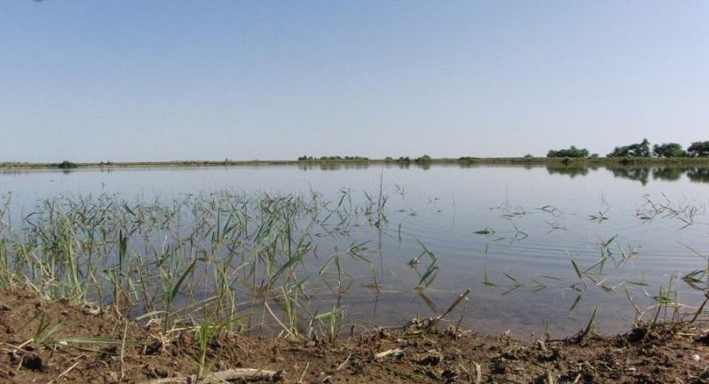 آب بندان روستای شموشک