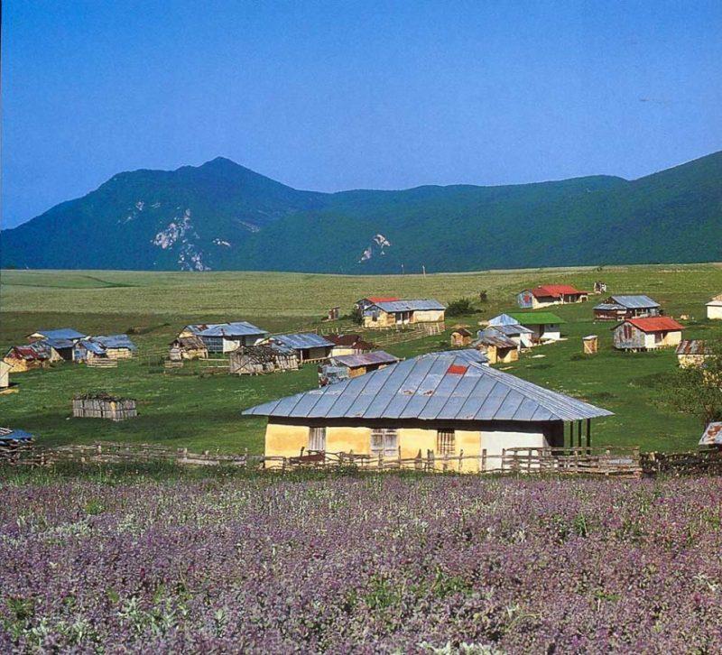 2649 روستای جهان نما