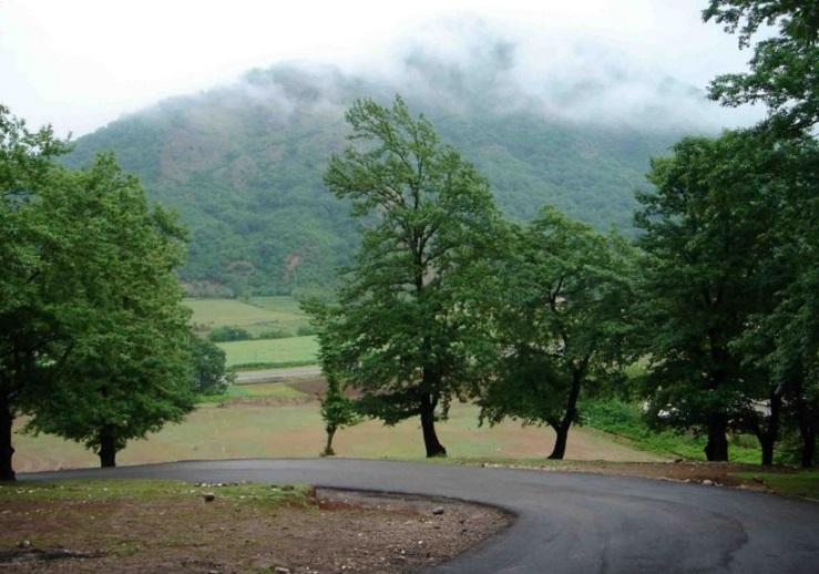 2701 پارک جنگلی شبنم