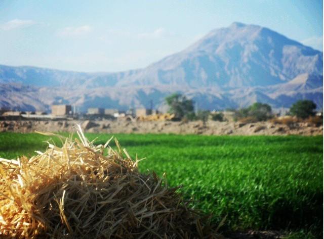 روستای غیاث آباد