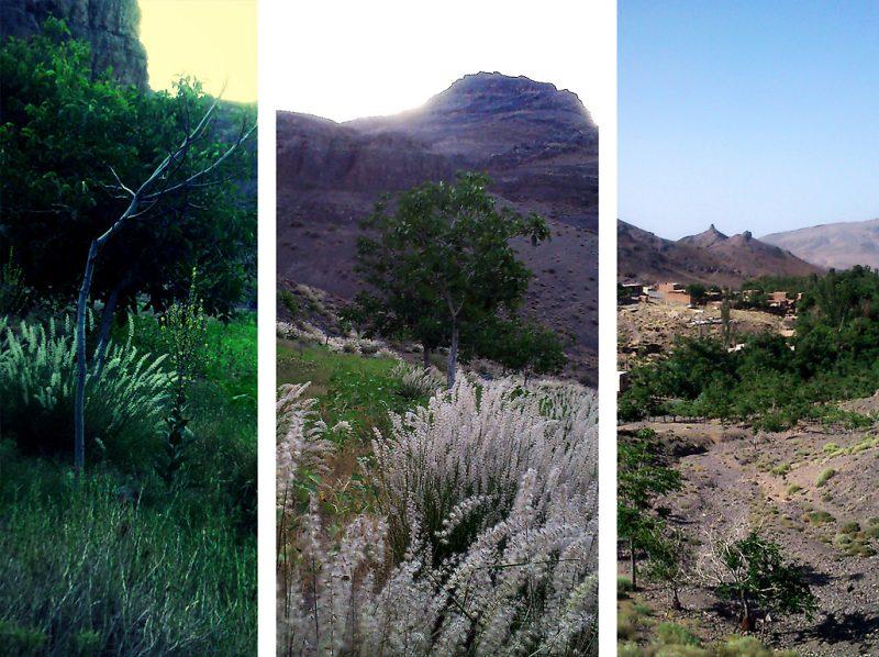 165 روستای داوران اردستان