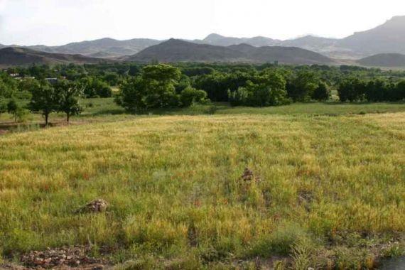 روستای کمال الملک ( کله )