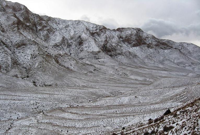 294 منطقه شکار ممنوع تپال