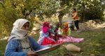 مراسم آئینی باران خواهی در زنجان