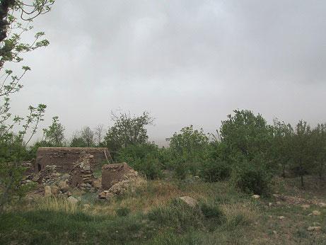 روستای ویدوجا