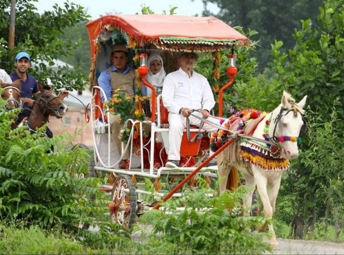 364 مراسم عروسی سنتی در تالش