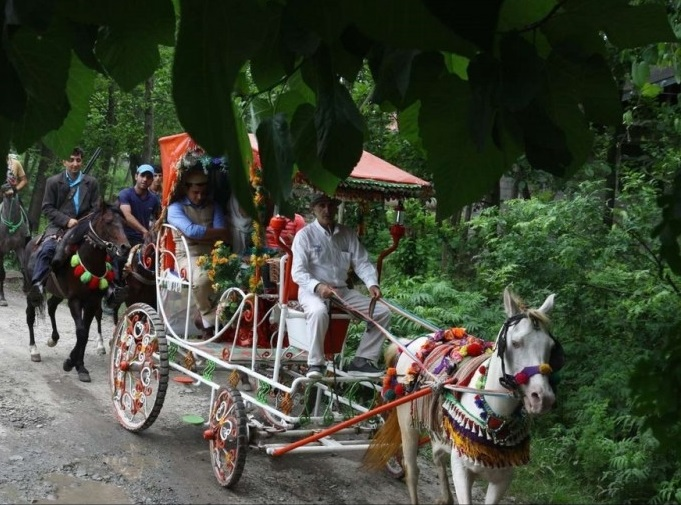 371 مراسم عروسی سنتی در تالش