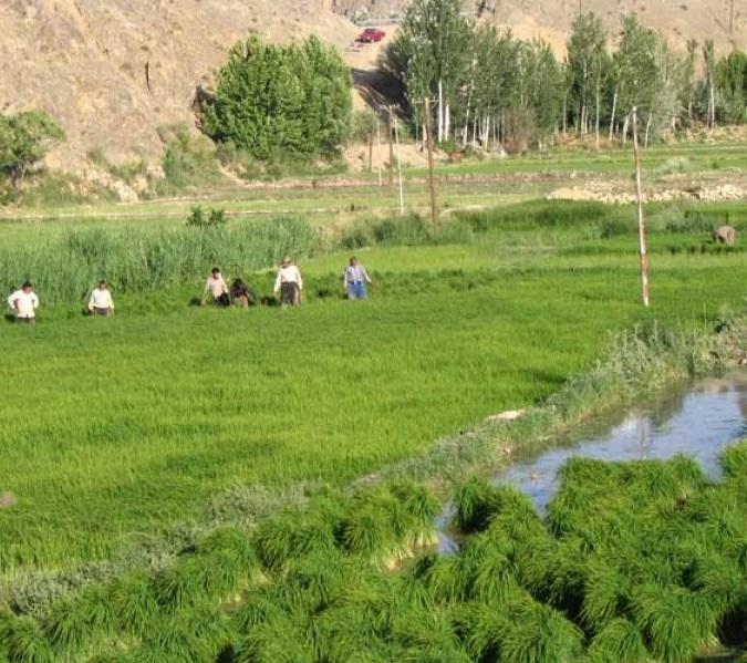 46 روستای چم رود