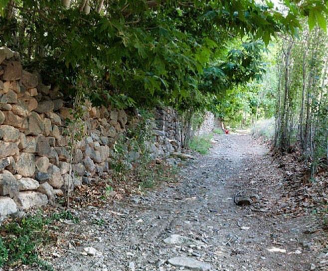 61 روستای اوره نطنز