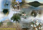 روستای خیر