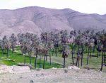 روستاي كوشك حسن آباد