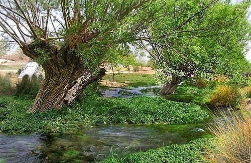 media2_image_gharbalbiz_qarbalbbiz_mazvar_mehriz_espianade_spring_fountain روستای کوهنجان
