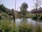 روستای قصر یعقوب