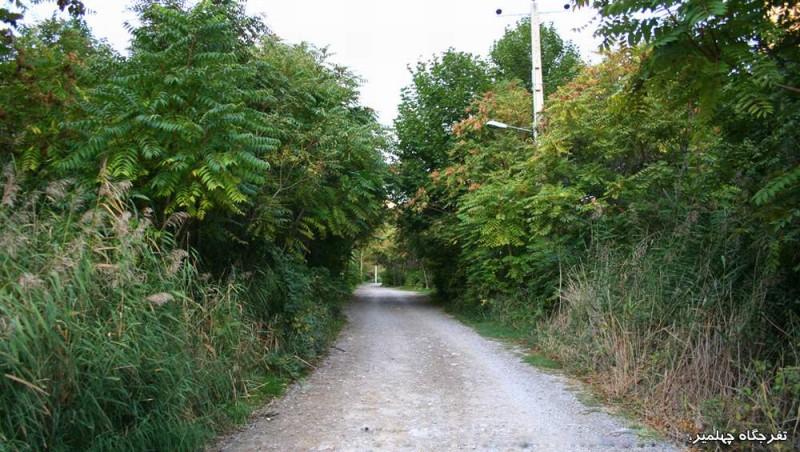 1099 پارک جنگلی چهلمیر
