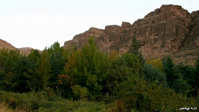 1105 پارک جنگلی چهلمیر
