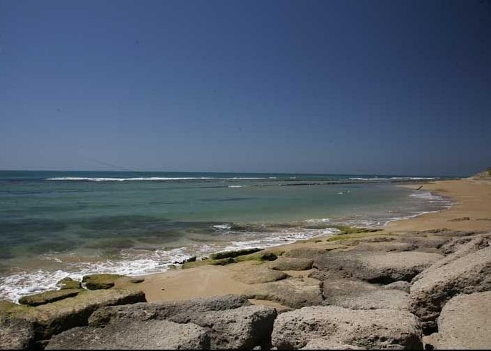 سواحل پارسیان