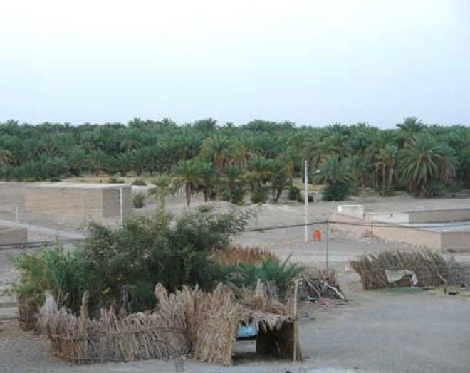 1505 روستای آبادان ( ایرانشهر )