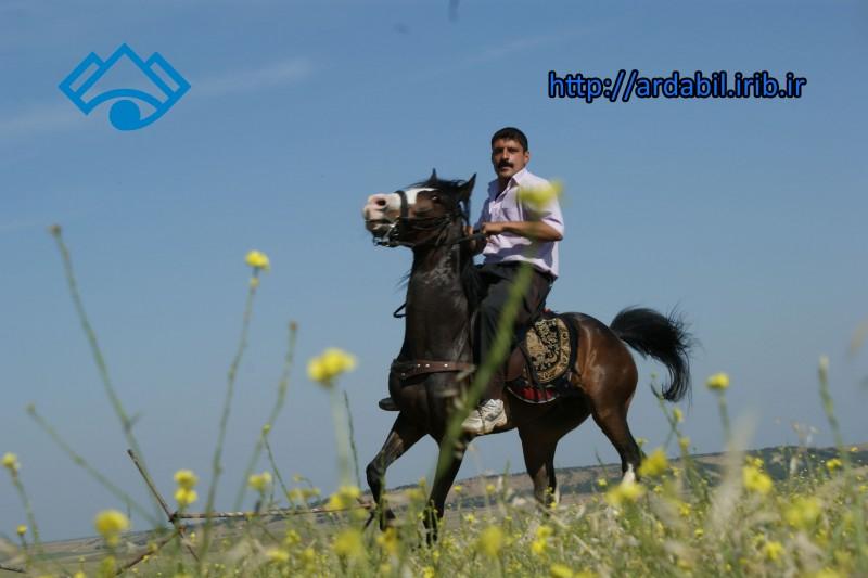 عشایر شاهسون