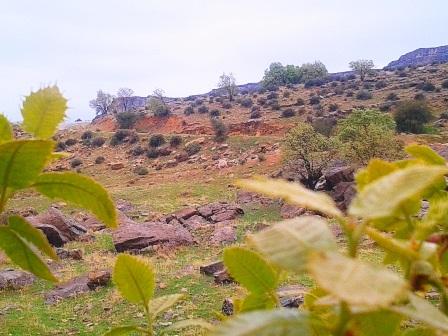 روستای دهنو مرکزی