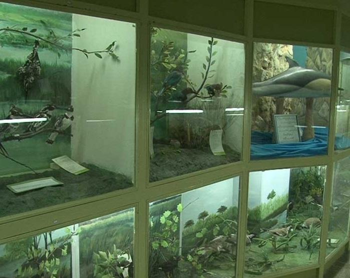 موزه جانور شناسی همدان