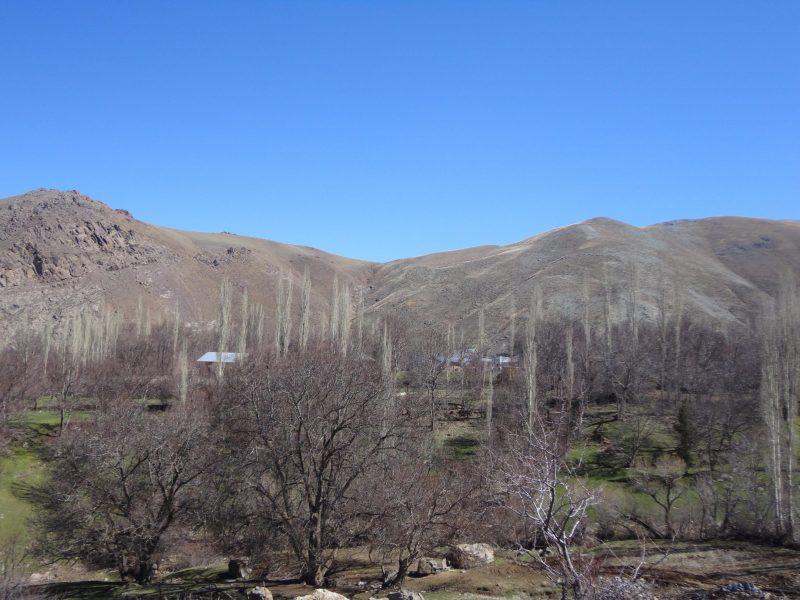 روستای آوه