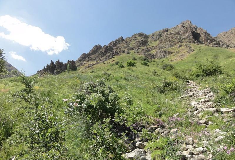 2699 آبشار عیش آباد