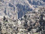 آبشار علیشاهی