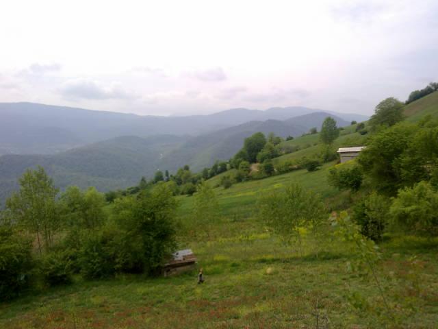2786 - روستای سوچلما