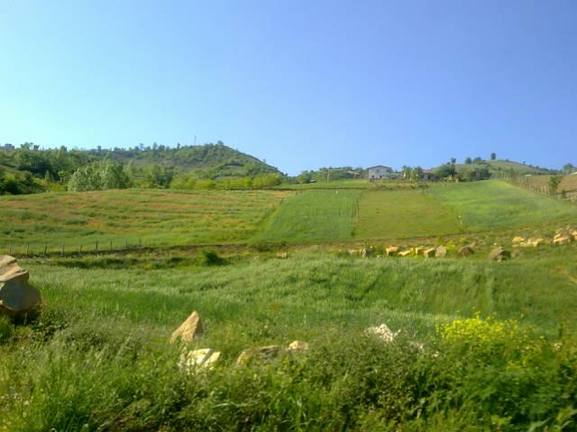 2787 - روستای سوچلما