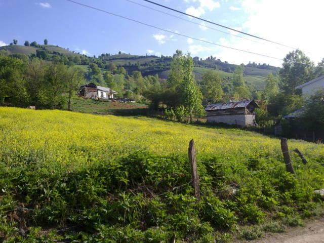 2789 - روستای سوچلما