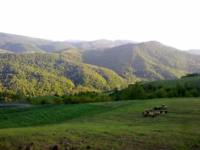 2791 - روستای سوچلما