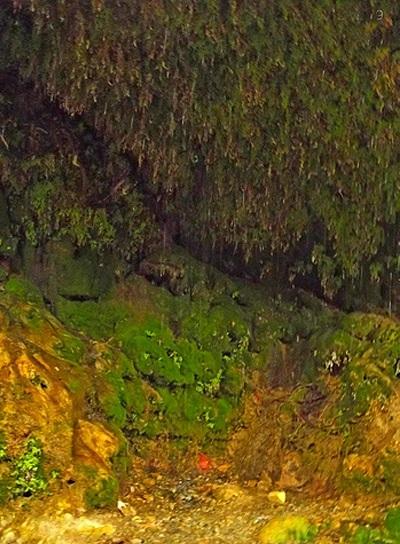 1 آبشار قطره باران