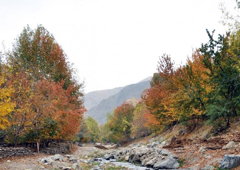 روستای بوژان