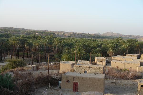117 روستای دامن