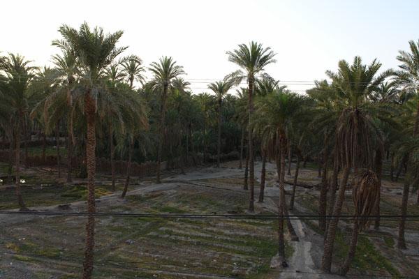 123 روستای دامن