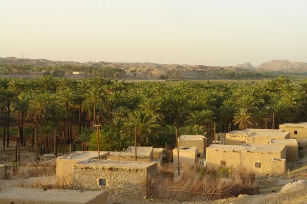 124 روستای دامن