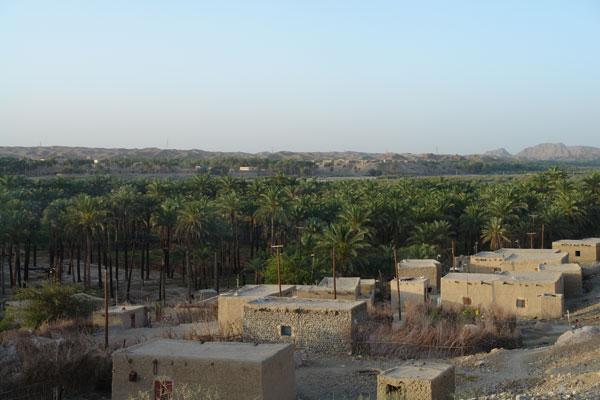 125 روستای دامن