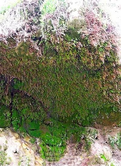 2 آبشار قطره باران