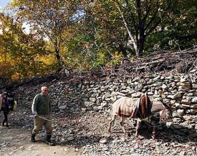 24 روستای آهار