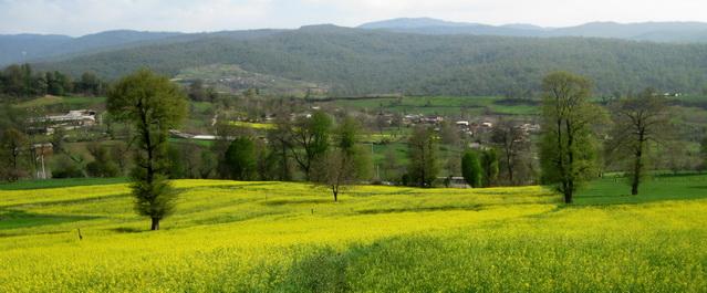 2999 روستای سه کیله