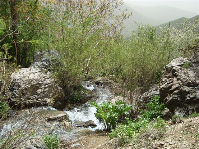 33 روستای کن تهران
