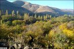 روستای کردان کرج