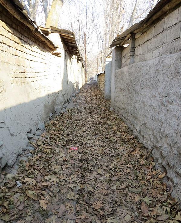 روستای برغان