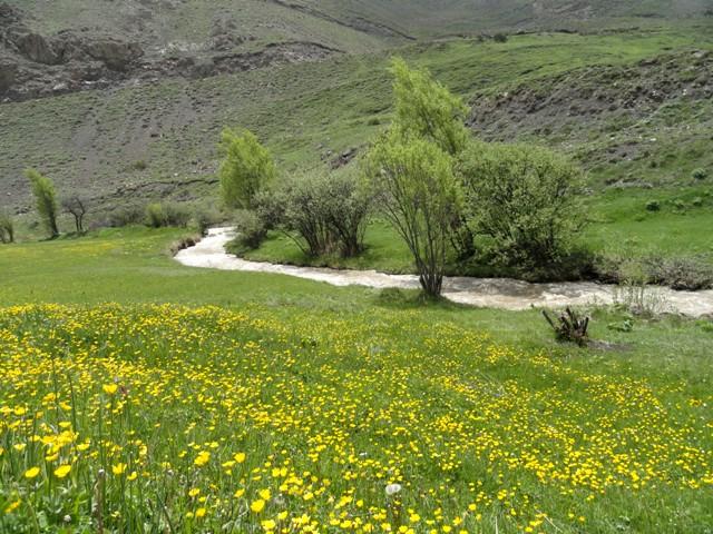 روستای نج بلده