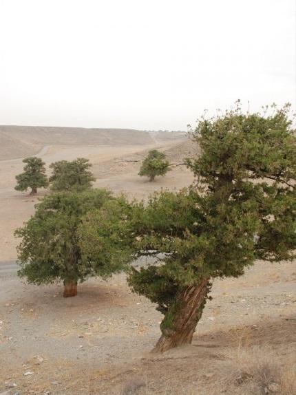 92 روستای گهوار گر