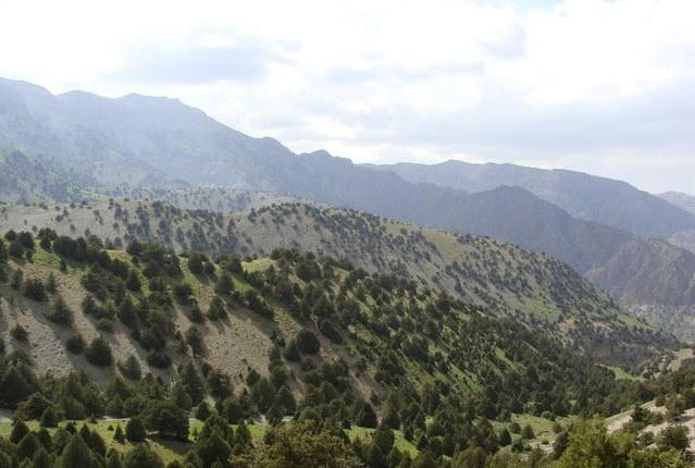319 آبشار نورالی