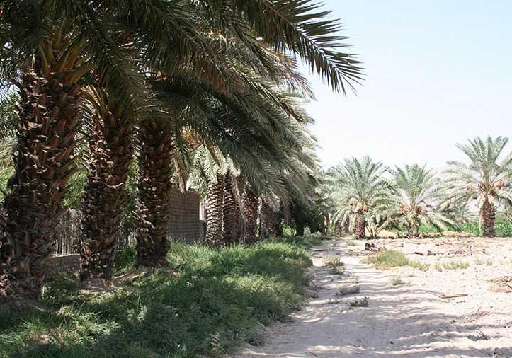 روستای دهنو بندرعباس